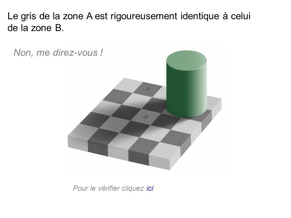 Le gris de la zone A est rigoureusement identique à celui de la zone B.
