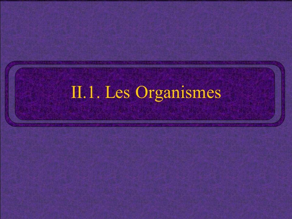 II.1. Les Organismes