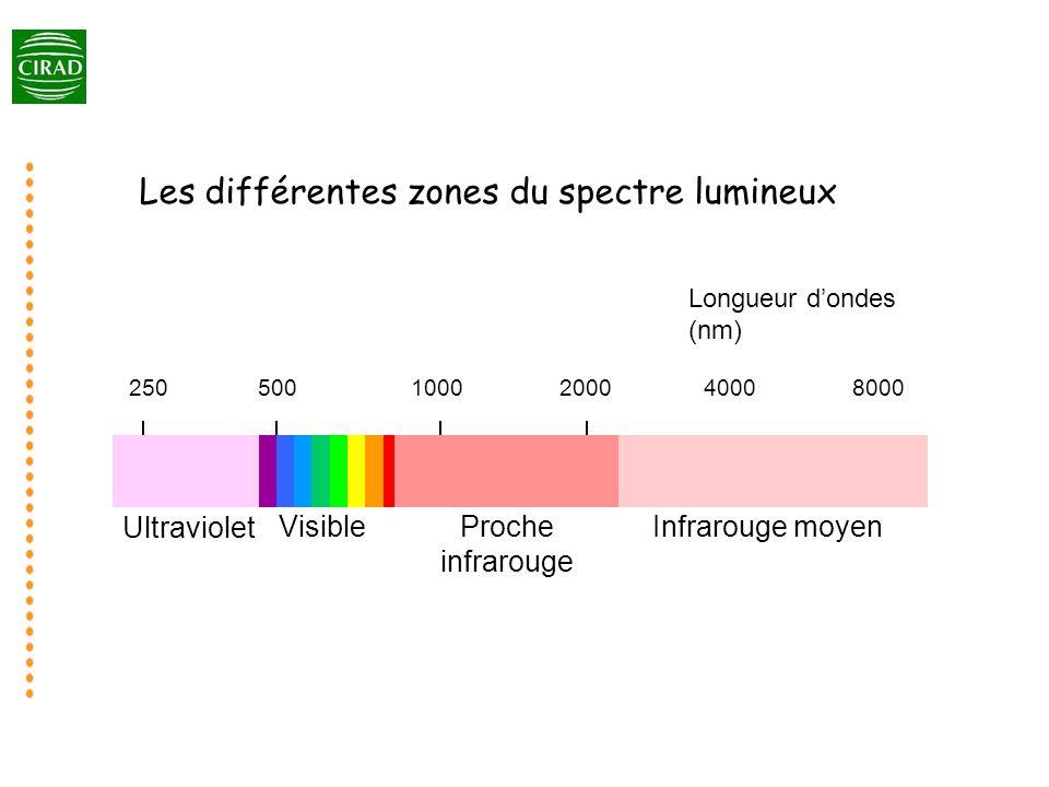 Les différentes zones du spectre lumineux