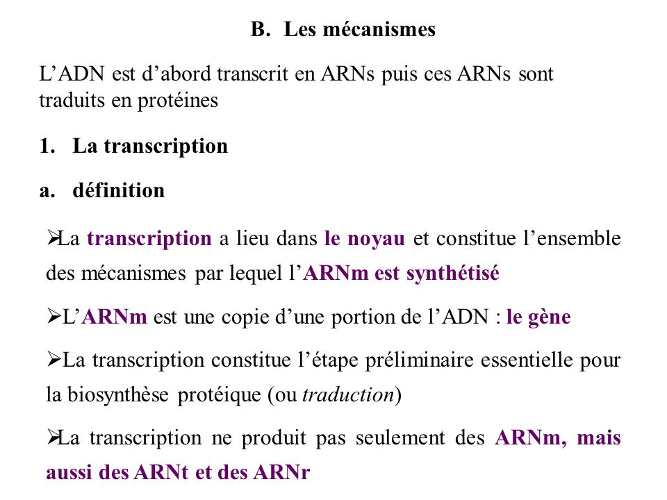 Les mécanismesL'ADN est d'abord transcrit en ARNs puis ces ARNs sont traduits en protéines. La transcription.