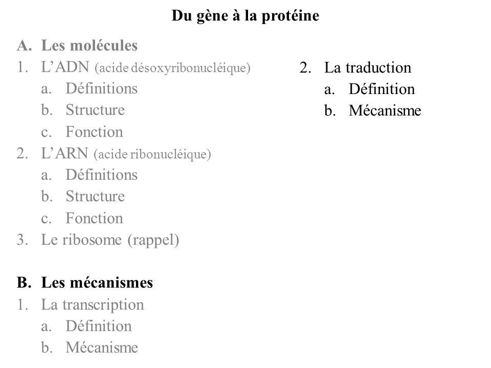Du gène à la protéineA. Les molécules. L'ADN (acide désoxyribonucléique) Définitions. Structure. Fonction.