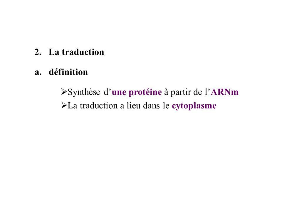 La traductiondéfinition.Synthèse d'une protéine à partir de l'ARNm.