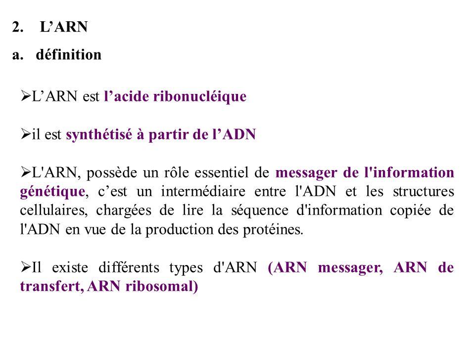 L'ARNdéfinition. L'ARN est l'acide ribonucléique. il est synthétisé à partir de l'ADN.