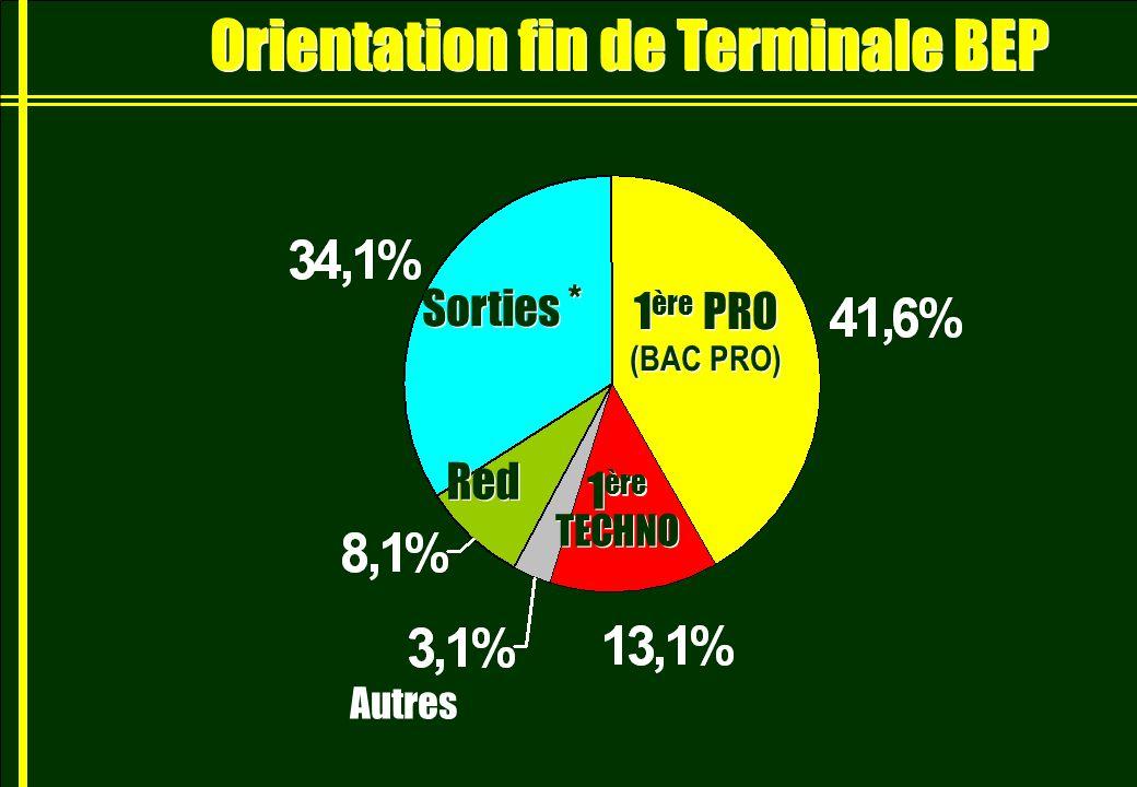 Orientation fin de Terminale BEP
