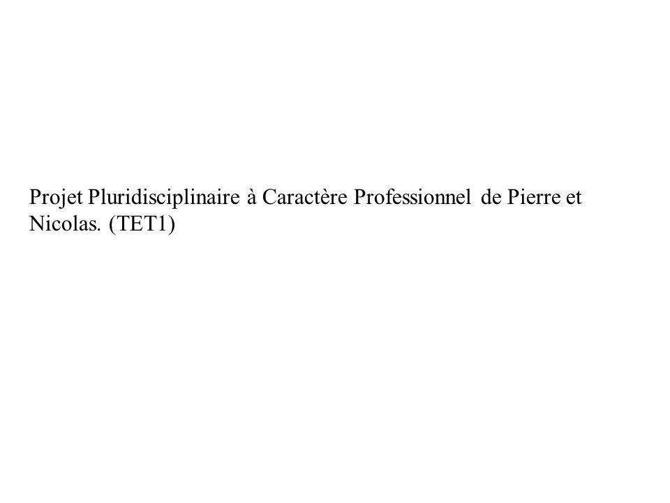 Projet Pluridisciplinaire à Caractère Professionnel de Pierre et Nicolas. (TET1)