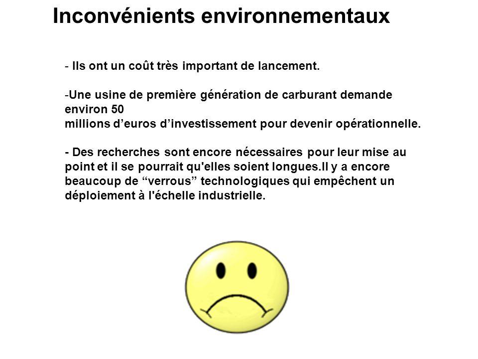 Inconvénients environnementaux