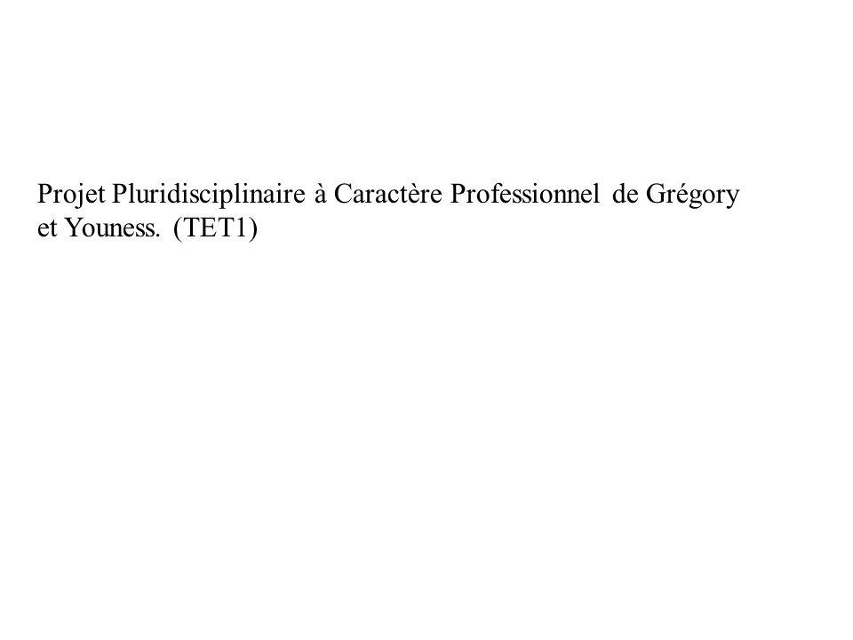 Projet Pluridisciplinaire à Caractère Professionnel de Grégory et Youness. (TET1)