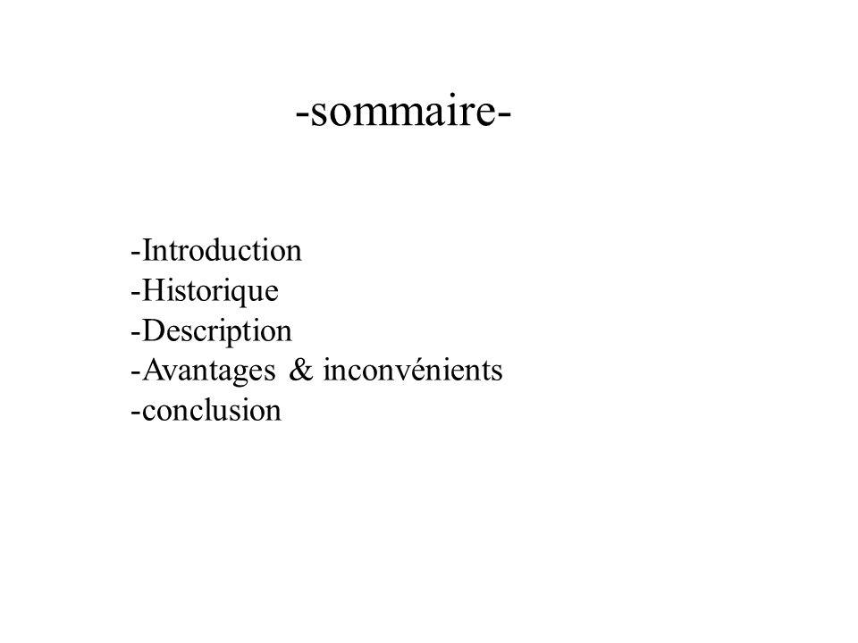 -sommaire- Introduction Historique Description