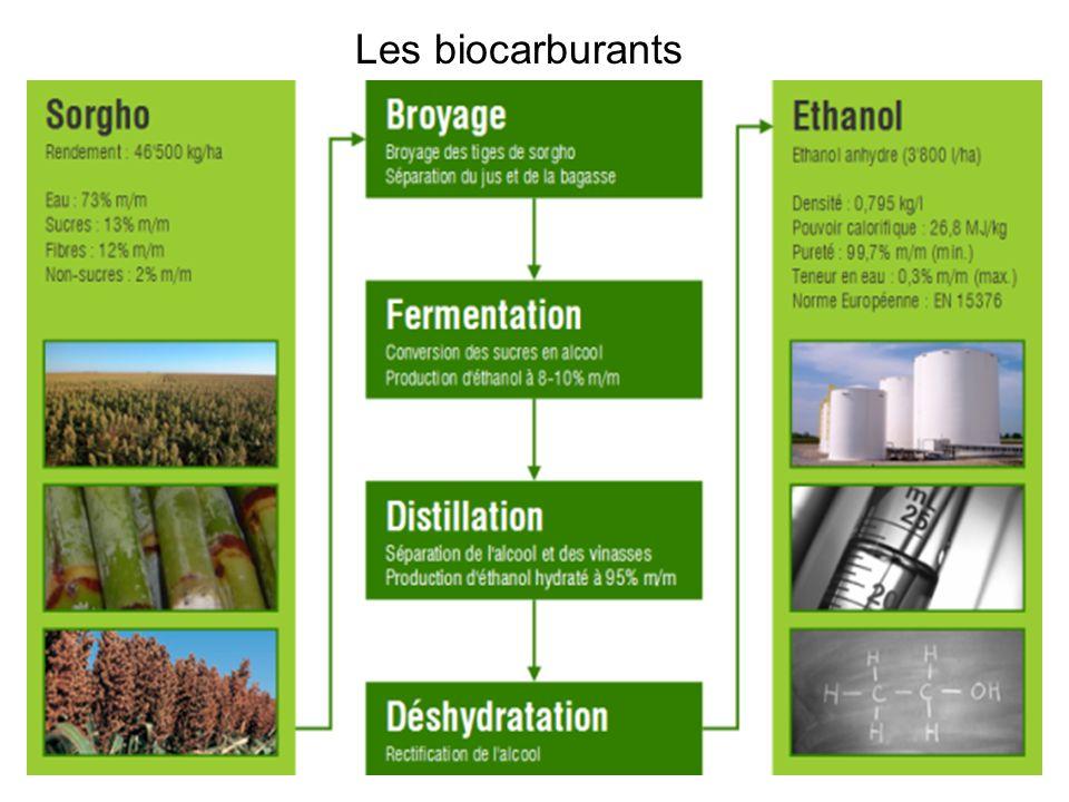 Les biocarburantsLe bio-éthanol est obtenu par fermentation de sucres par des levures.