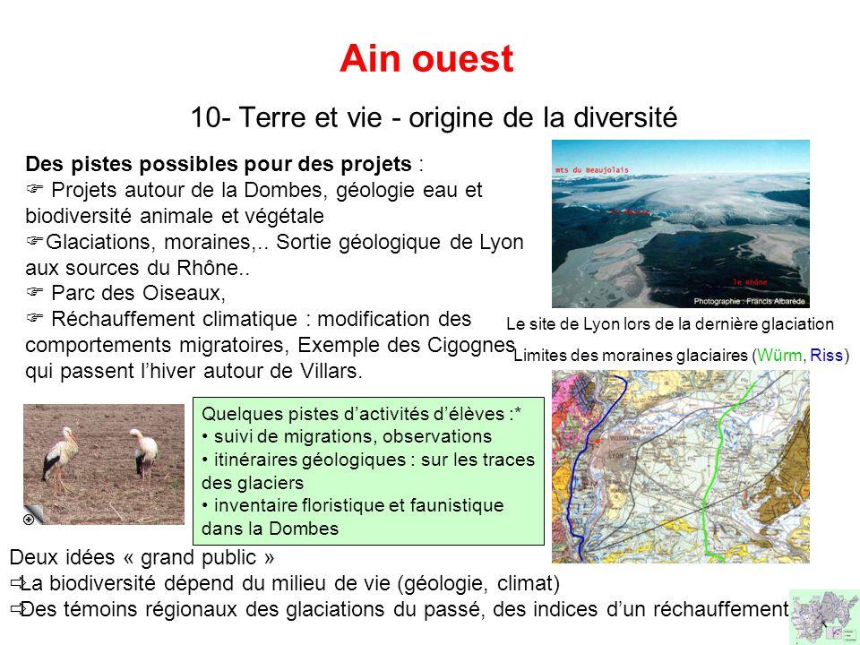 Ain ouest 10- Terre et vie - origine de la diversité