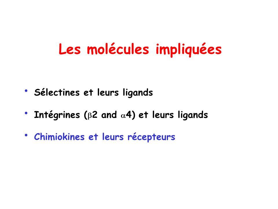 Les molécules impliquées