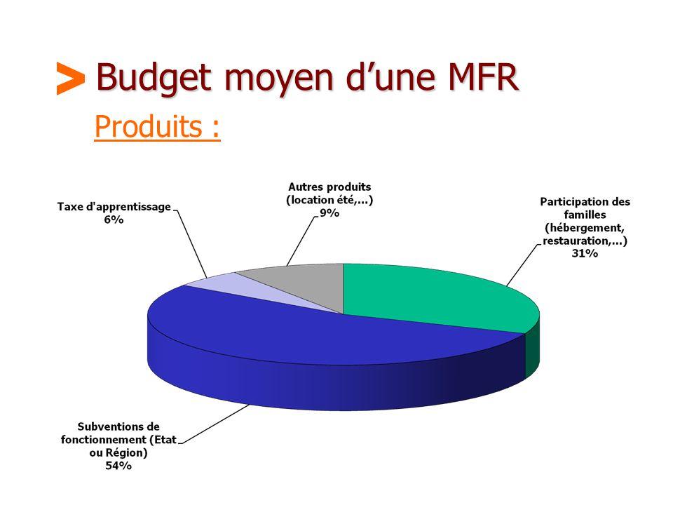Budget moyen d'une MFR > Produits :