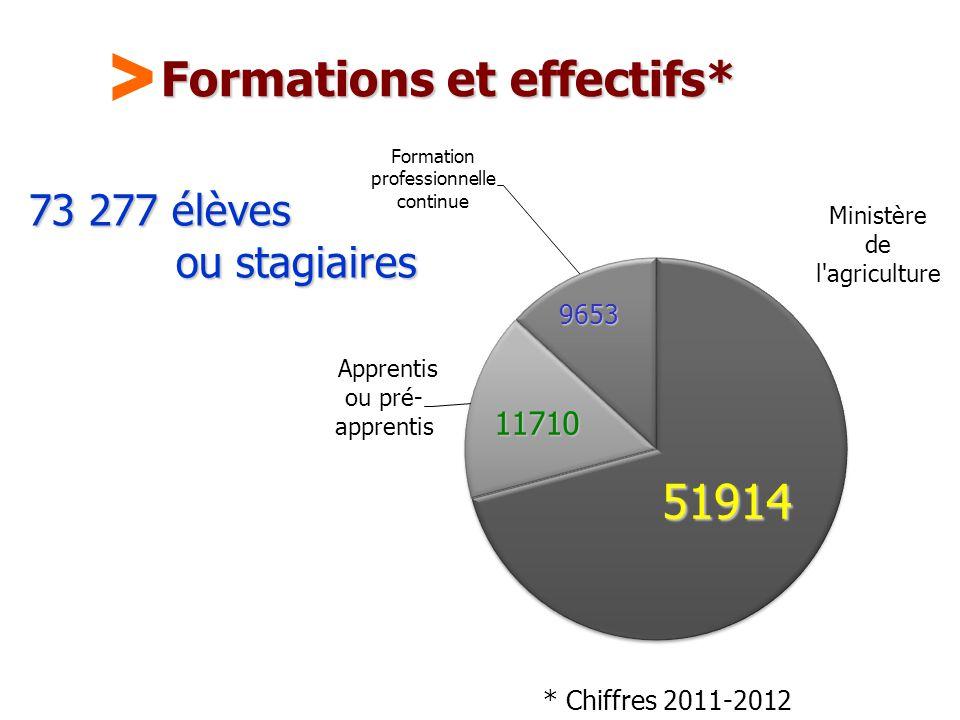 Formations et effectifs*