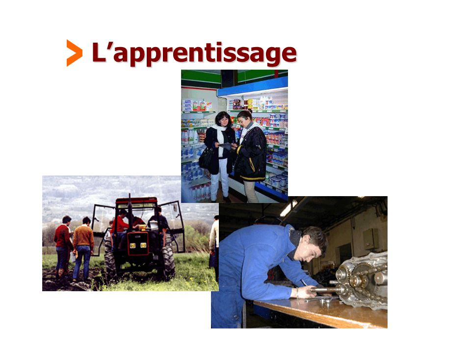 L'apprentissage >