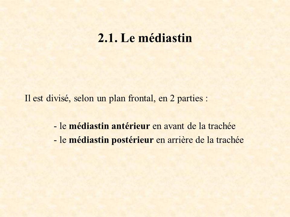 2.1. Le médiastin Il est divisé, selon un plan frontal, en 2 parties :