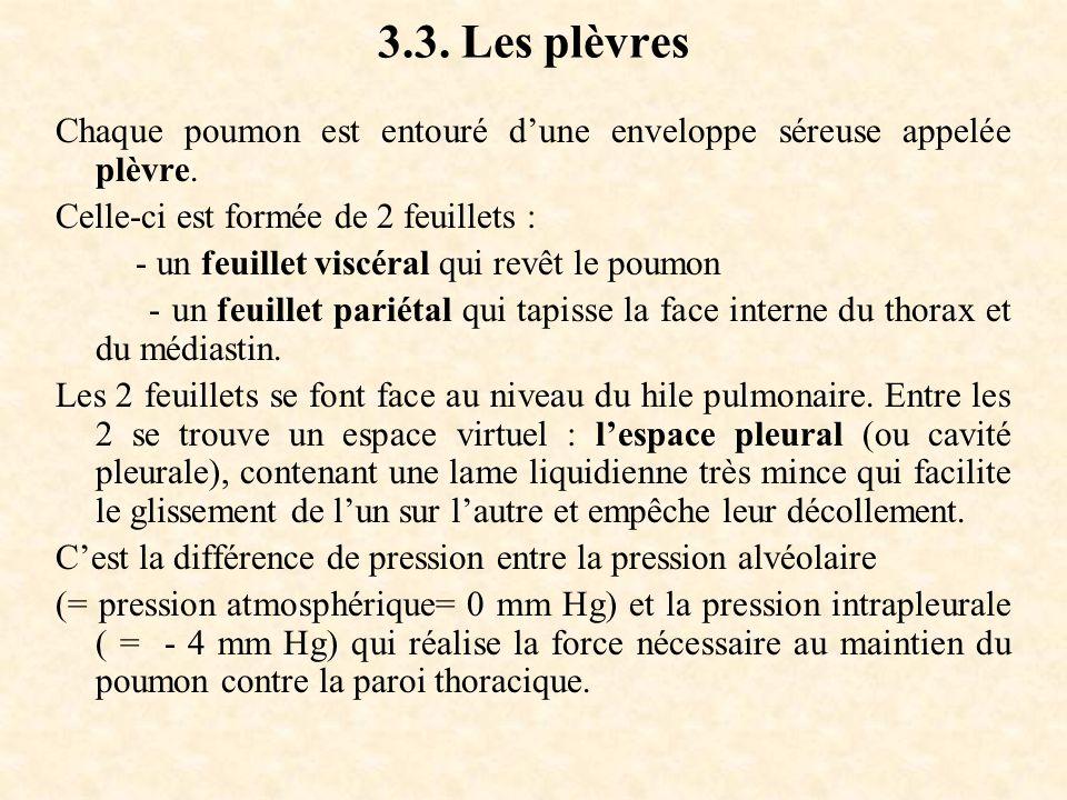3.3. Les plèvres Chaque poumon est entouré d'une enveloppe séreuse appelée plèvre. Celle-ci est formée de 2 feuillets :