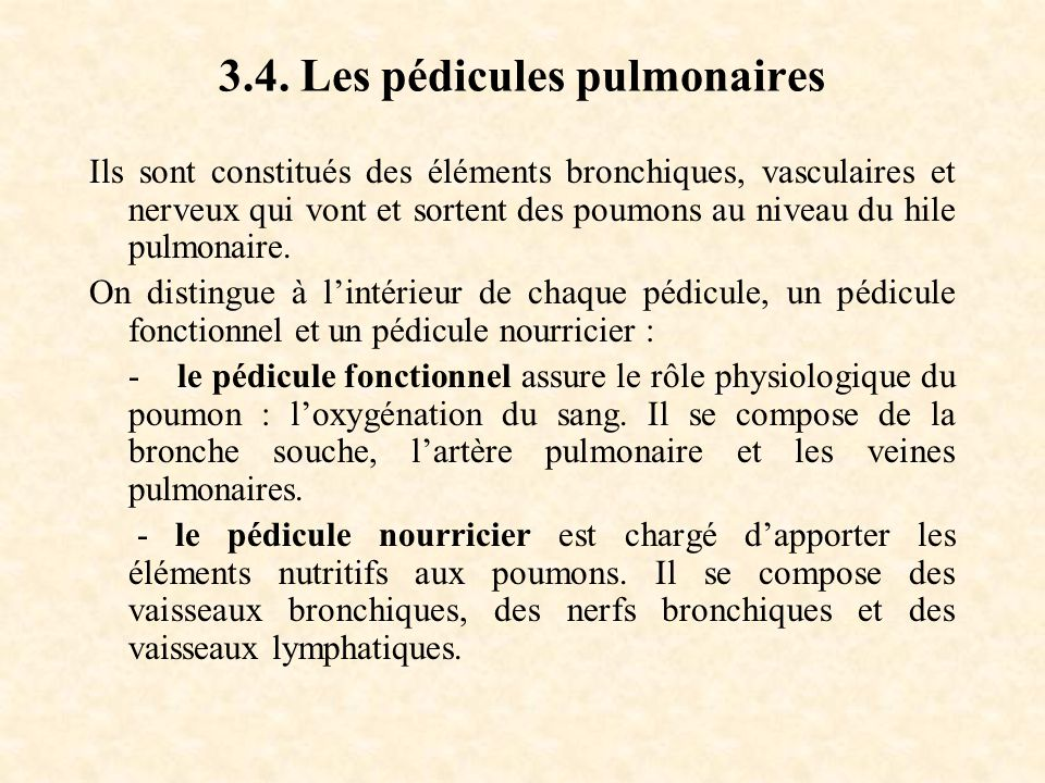 3.4. Les pédicules pulmonaires
