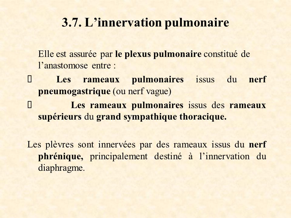 3.7. L'innervation pulmonaire