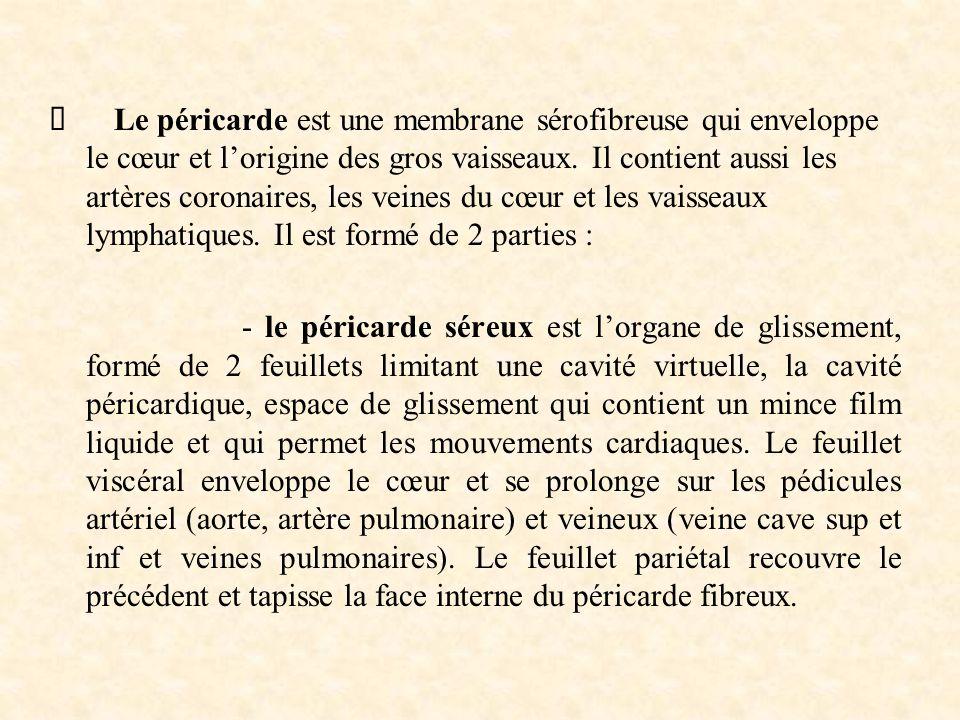 Ø Le péricarde est une membrane sérofibreuse qui enveloppe le cœur et l'origine des gros vaisseaux. Il contient aussi les artères coronaires, les veines du cœur et les vaisseaux lymphatiques. Il est formé de 2 parties :