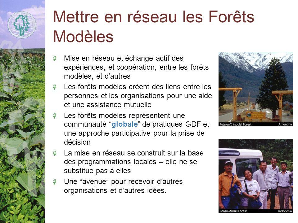 Mettre en réseau les Forêts Modèles