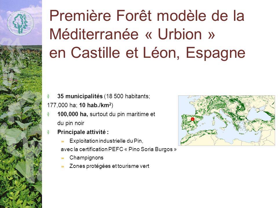 Première Forêt modèle de la Méditerranée « Urbion » en Castille et Léon, Espagne