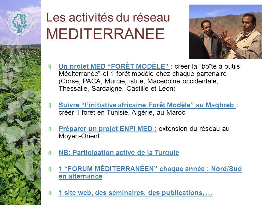 Les activités du réseau MEDITERRANEE