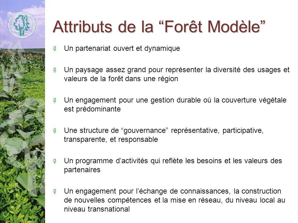 Attributs de la Forêt Modèle