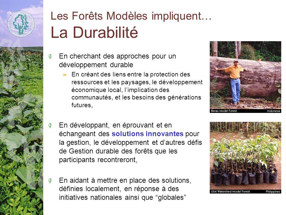 Les Forêts Modèles impliquent… La Durabilité