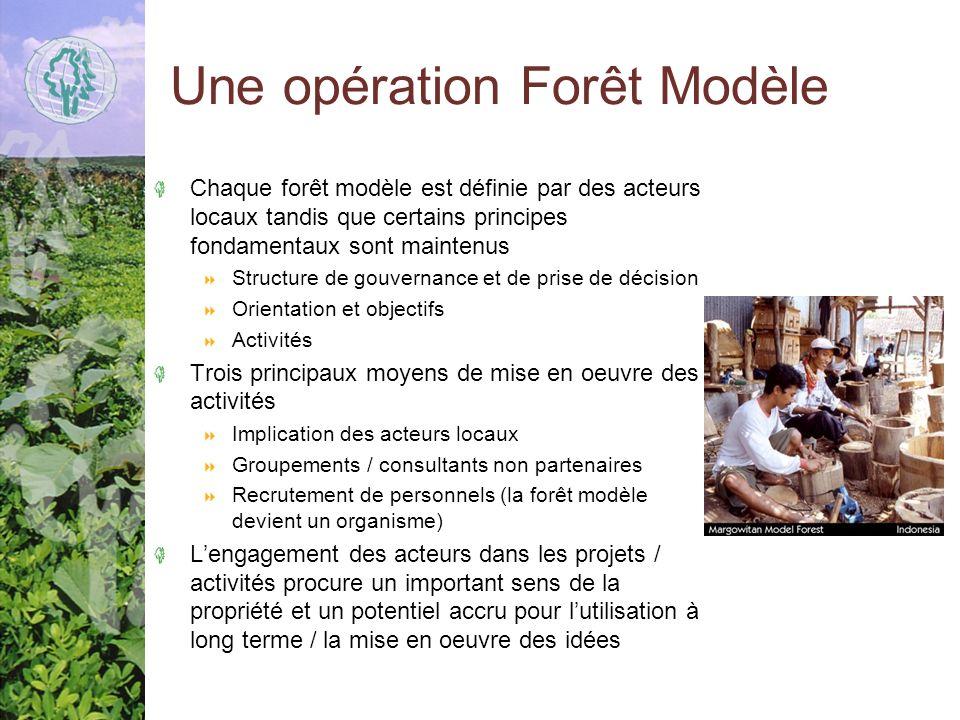 Une opération Forêt Modèle