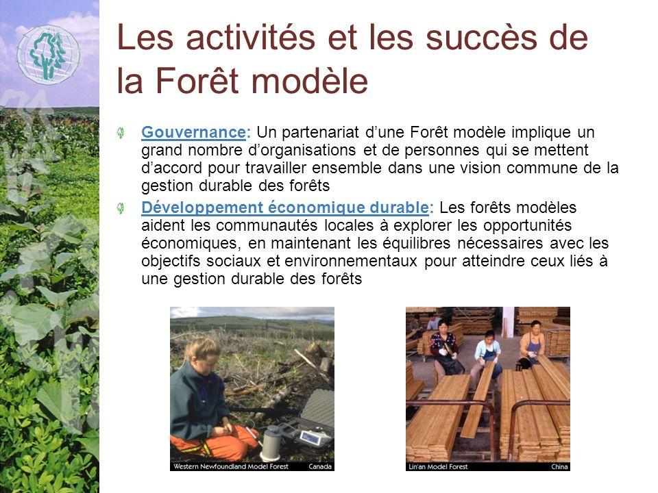 Les activités et les succès de la Forêt modèle