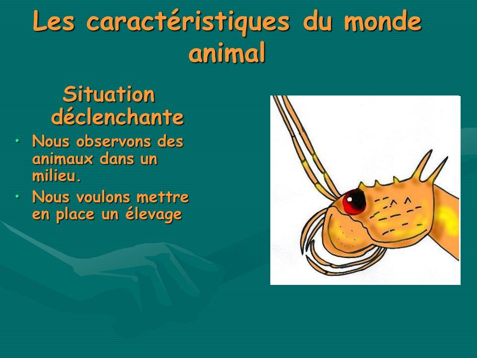 Les caractéristiques du monde animal