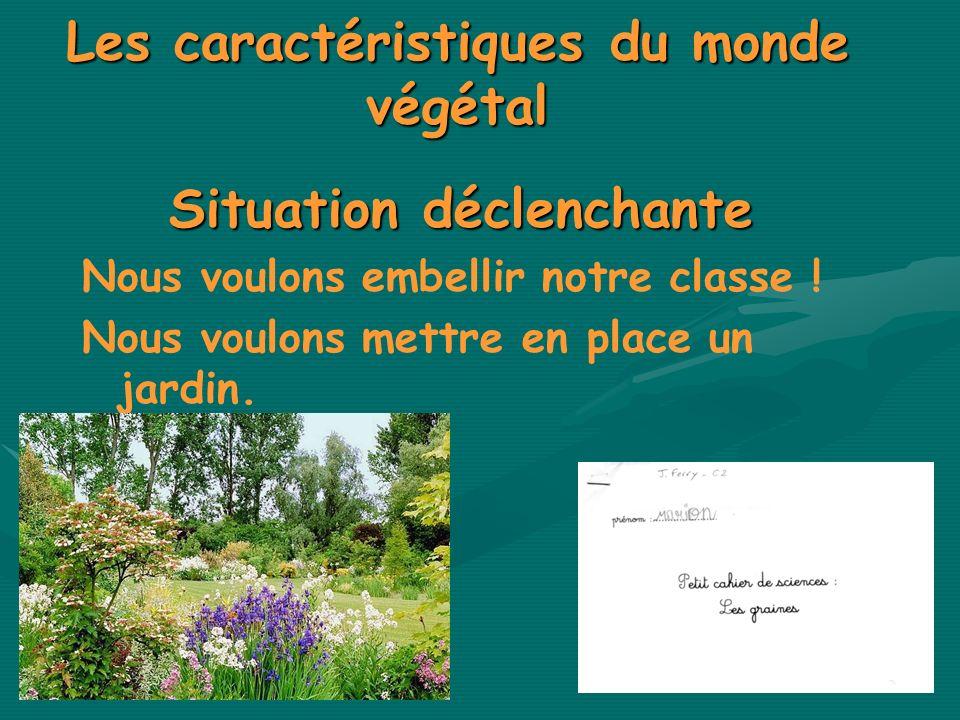 Les caractéristiques du monde végétal
