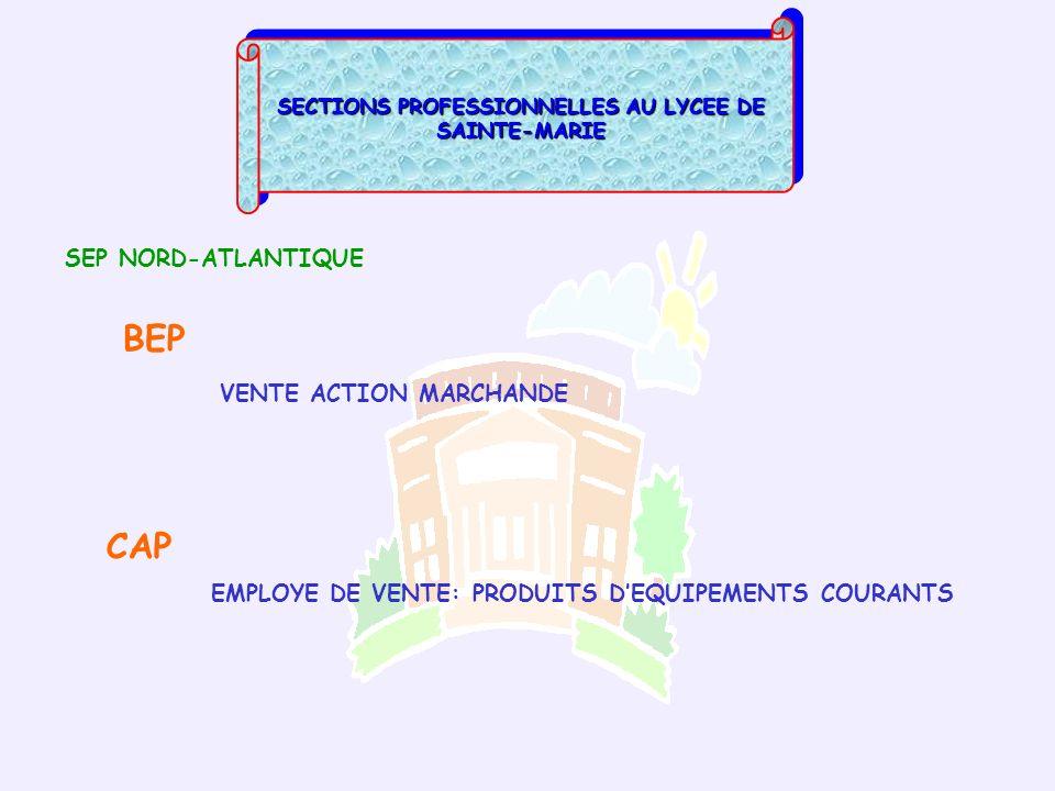 SECTIONS PROFESSIONNELLES AU LYCEE DE SAINTE-MARIE