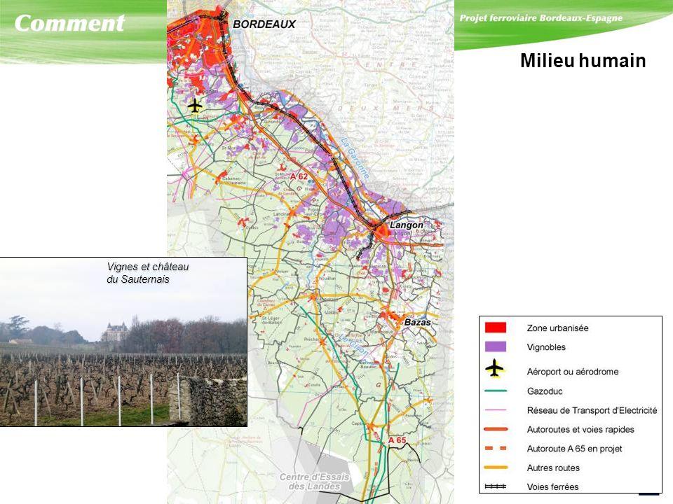 Milieu humain Vignes et château. du Sauternais.