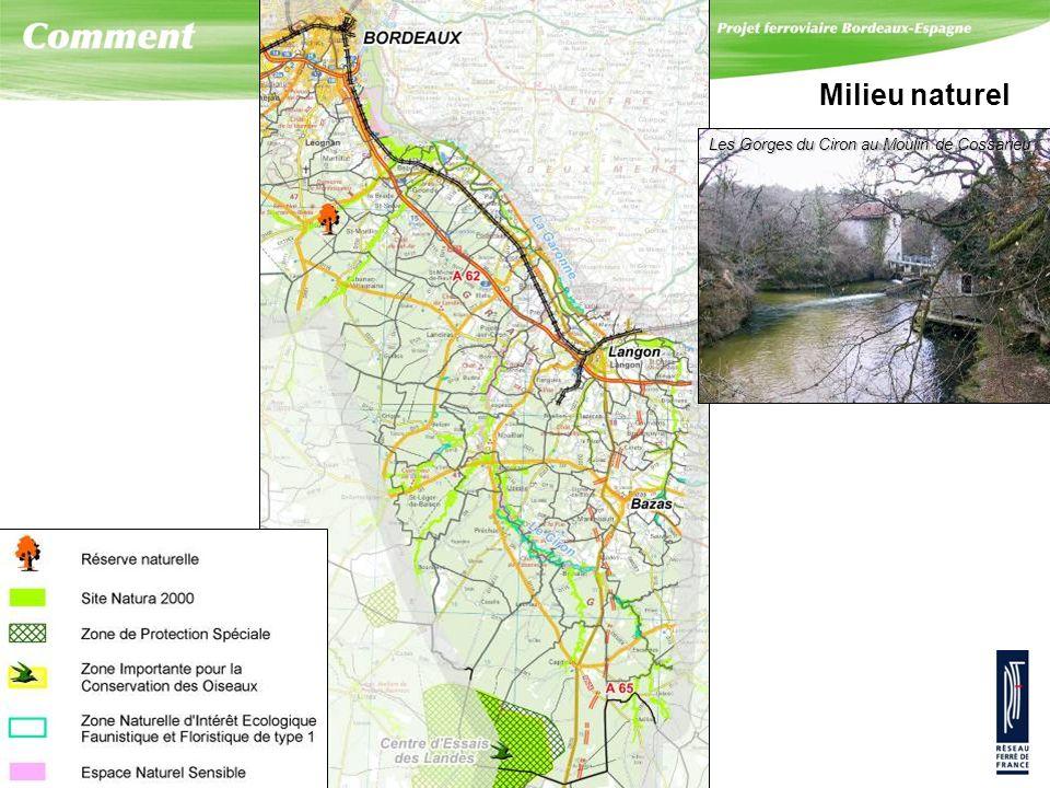 Milieu naturel Les Gorges du Ciron au Moulin de Cossarieu. Le milieu naturel de ce secteur est particulièrement riche, sensible et très diversifié :