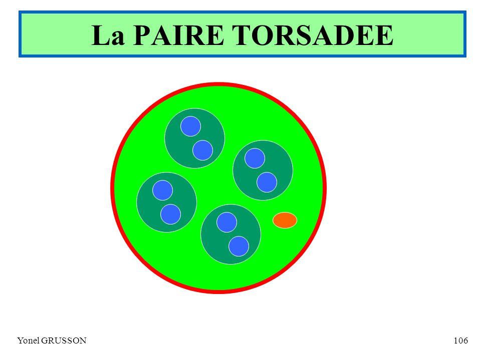 La PAIRE TORSADEE Yonel GRUSSON