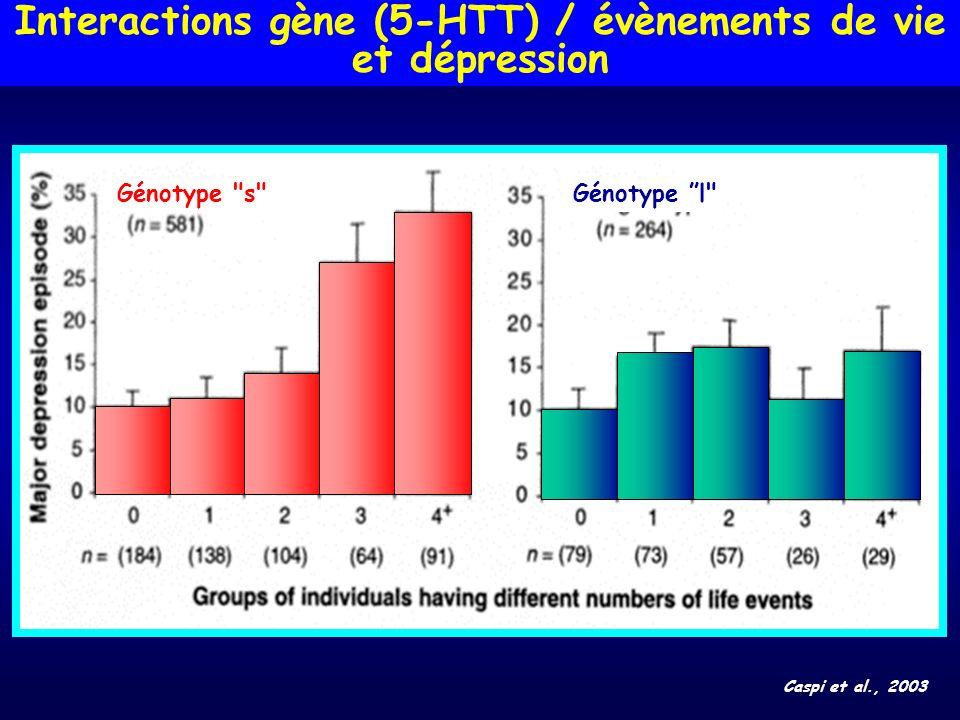 Interactions gène (5-HTT) / évènements de vie et dépression