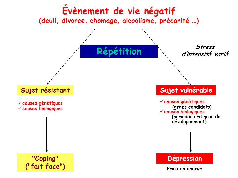 Évènement de vie négatif Répétition