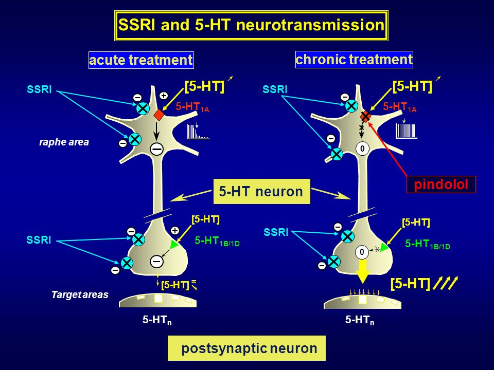 SSRI and 5-HT neurotransmission
