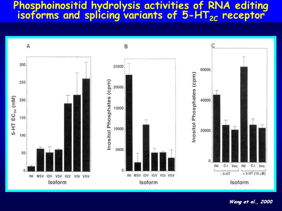 Phosphoinositid hydrolysis activities of RNA editing isoforms and splicing variants of 5-HT2C receptor