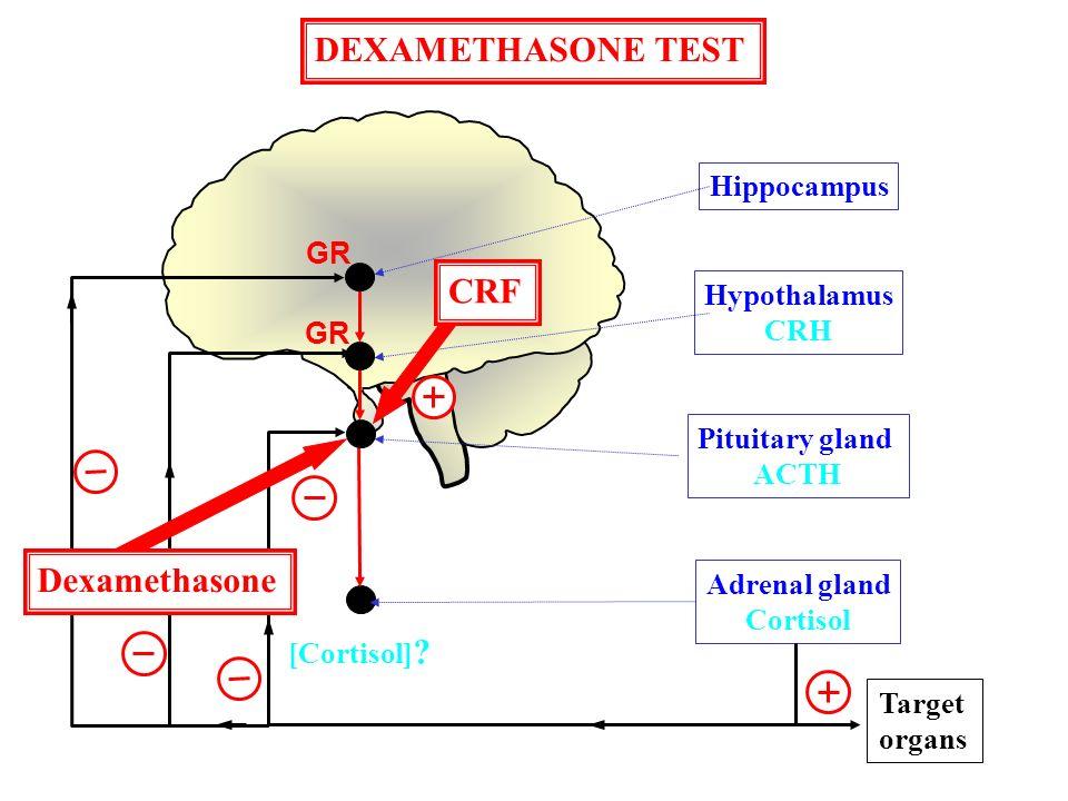 DEXAMETHASONE TEST CRF Dexamethasone Hippocampus GR Hypothalamus CRH