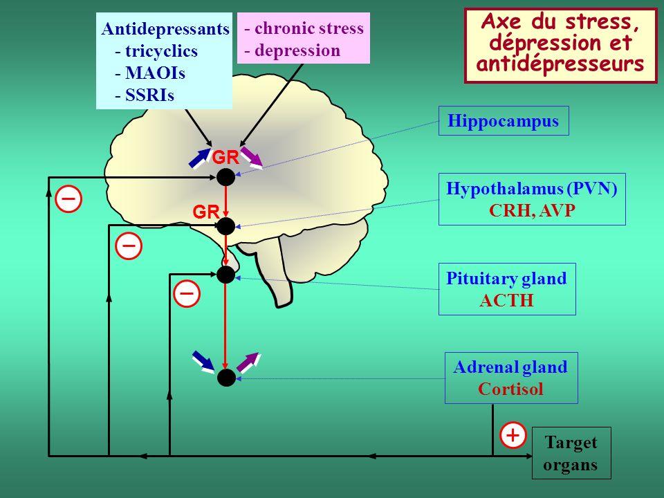 Axe du stress, dépression et antidépresseurs