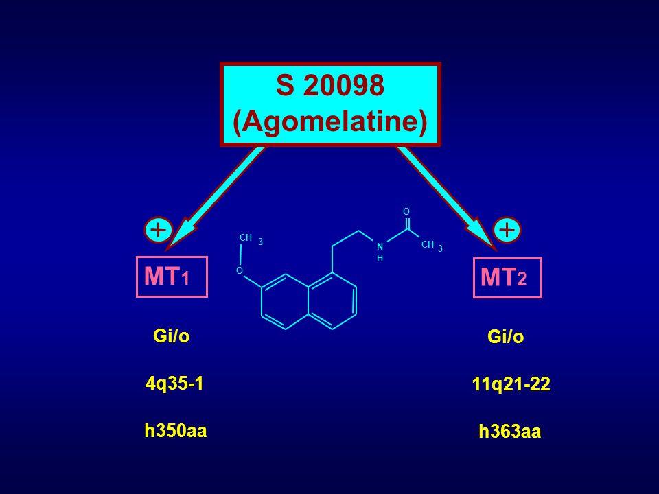 S 20098 (Agomelatine) MT1 MT2 Gi/o Gi/o 4q35-1 11q21-22 h350aa h363aa