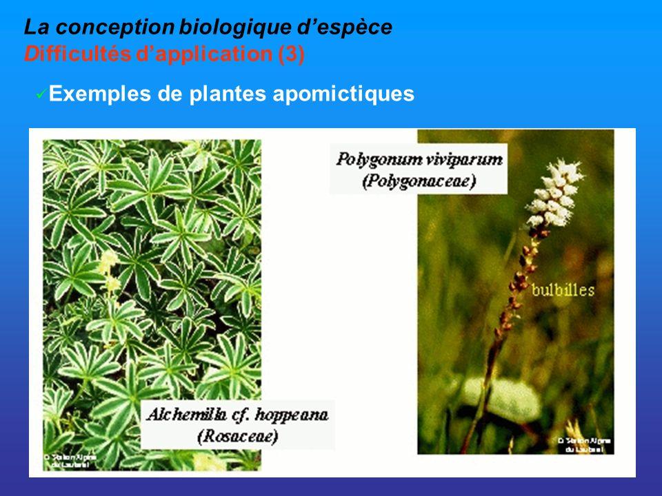 La conception biologique d'espèce Difficultés d'application (3)