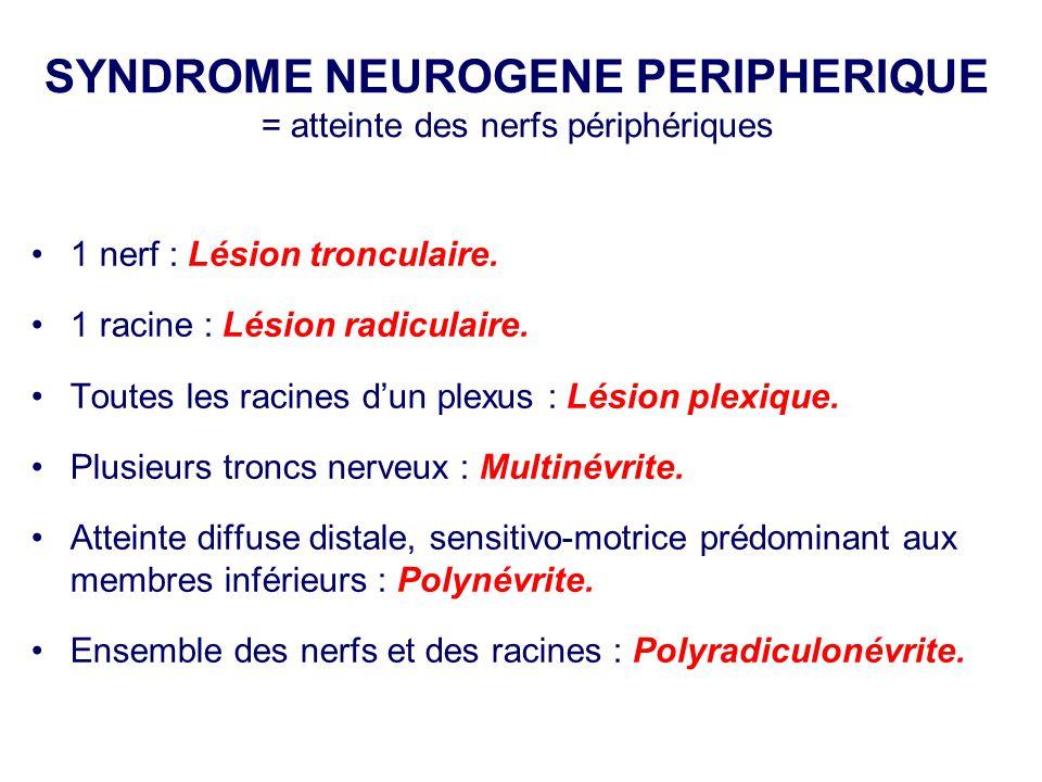 SYNDROME NEUROGENE PERIPHERIQUE = atteinte des nerfs périphériques