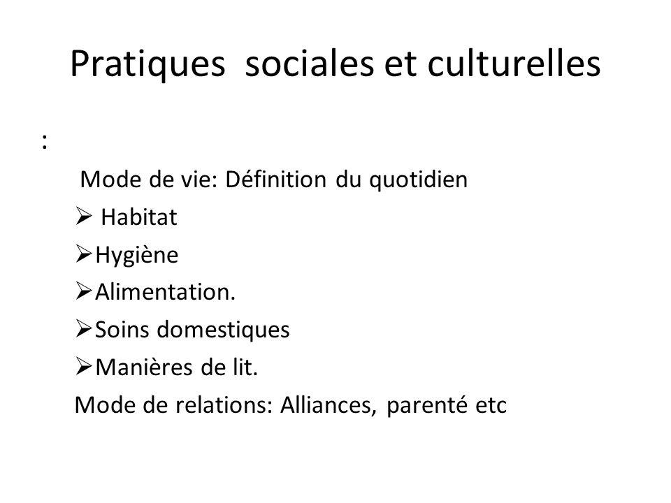 Pratiques sociales et culturelles