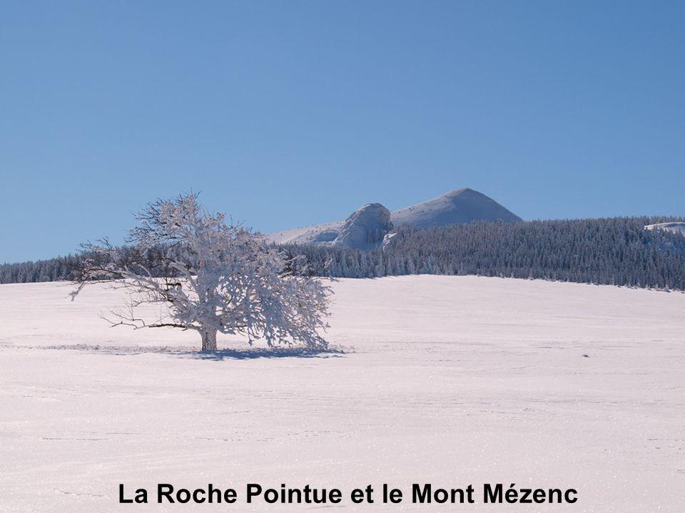 La Roche Pointue et le Mont Mézenc