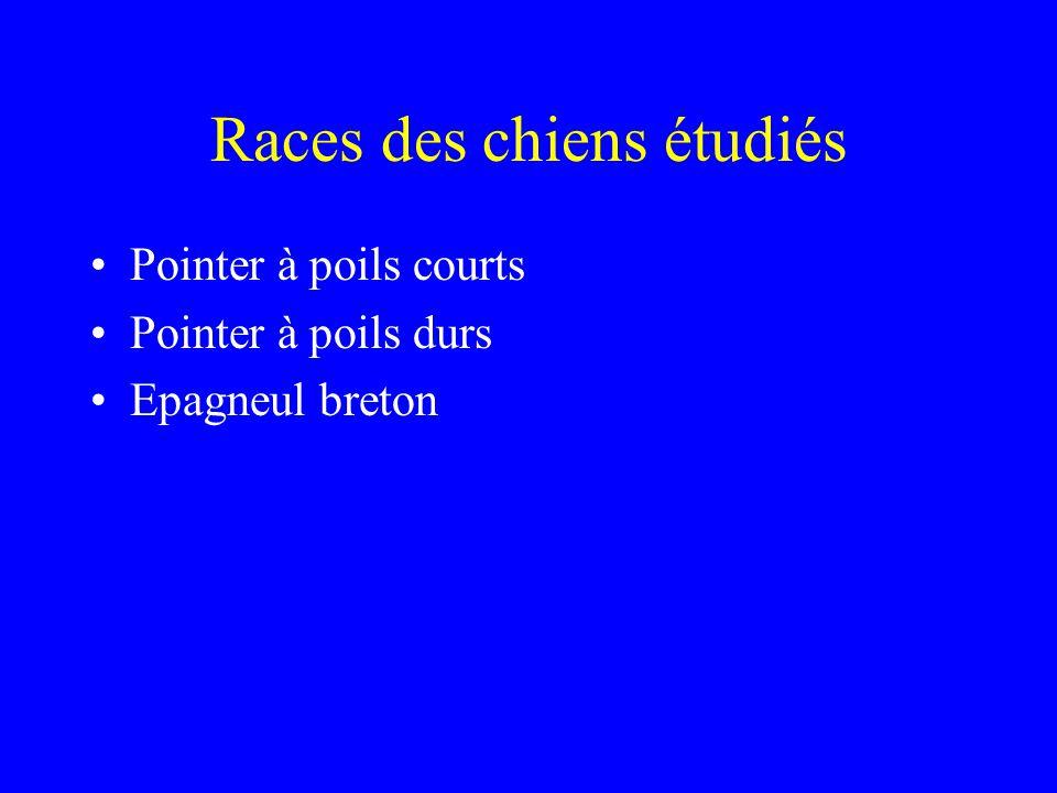 Races des chiens étudiés