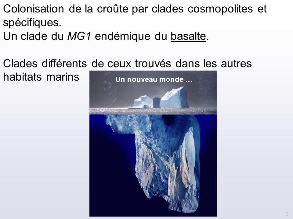 Colonisation de la croûte par clades cosmopolites et spécifiques.