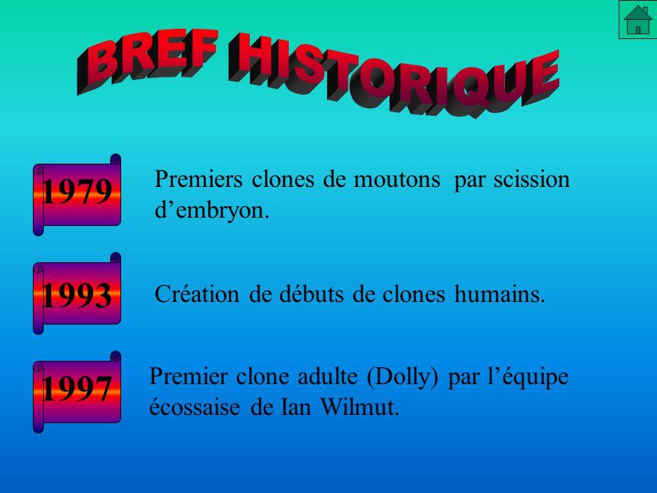 1979 1993 1997 BREF HISTORIQUE Premiers clones de moutons par scission